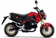 Motorbike Honda Msx 125 2015 Red Feature ฮอนด้า ขอนแก่น มอเตอร์ไบค์