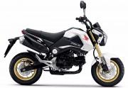 Motorbike Honda Msx 125 2015 White Feature ฮอนด้า ขอนแก่น มอเตอร์ไบค์