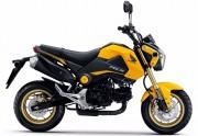 Motorbike Honda Msx 125 2015 Yellow Feature