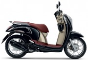 Motorbike Scoopy i Club 12 new 2016 Black Brown 01-01-01-01-01