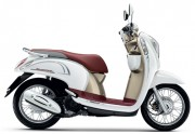 Motorbike Scoopy i Club 12 new 2016 White Brown 01-01